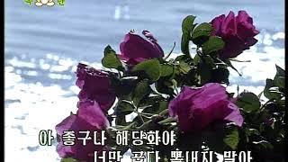 NorthKoreanSong:WildRose해당화北朝鮮歌謡「ハマナス」