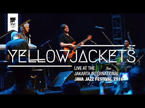 Yellowjackets Tour