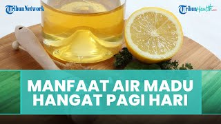 Manfaat Minum Air Hangat dan Madu Di Pagi Hari, Dapat Meningkatkan Kekebalan Tubuh