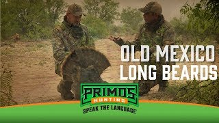 Old Mexico Long Beards