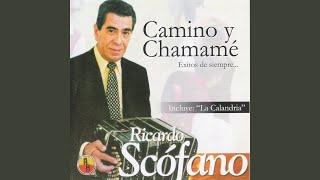 """Video thumbnail of """"Ricardo Scofano - Cielo de Mantilla"""""""