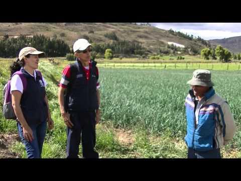 Vidéo Youtube - Projet d'appui au système financier agricole de Colombie