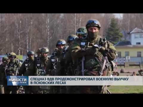 23.04.2019 / Спецназ ВДВ продемонстрировал военную выучку в псковских лесах