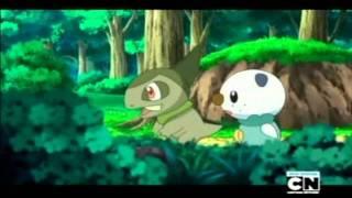 Pokemon Freak The Freak Out !