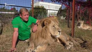 Индийским слонам здесь не место: судьба крымского бизнесмена Зубкова