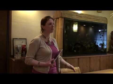Scalper strategija dvejetainių parinkčių vaizdo įrašui