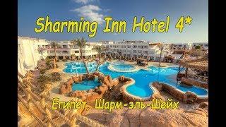 Отзыв об отеле Sharming Inn Hotel 4* / Египет , Шарм-Эль-Шейх/СержАня