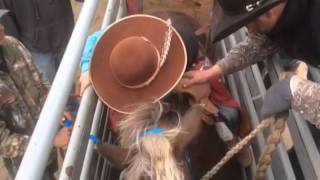 L3S Cowboys...Born To Follow Rodeo. Song By Chris LeDoux