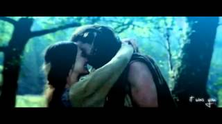 Within temptation Swan Song -Braveheart (With lyrics)
