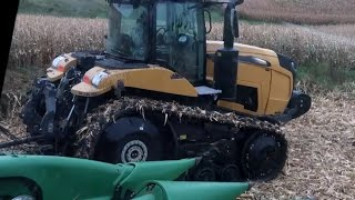 Harvesting Corn in the Mud Before the Rain