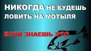 Активатор клева диалоги о рыбалке мотыль