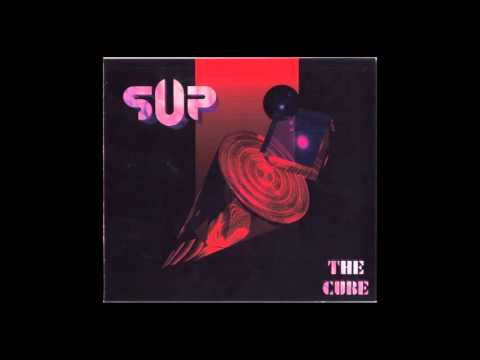 Supuration - 1993 - The Cube Mp3