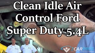 Clean Idle Air Control Ford Super Duty 5.4L