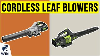 10 Best Cordless Leaf Blowers 2020