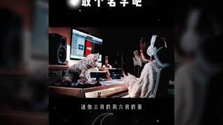 Bốn Mùa Trao Anh [四季予你] - Những Bản Cover Hay [Tik Tok China]