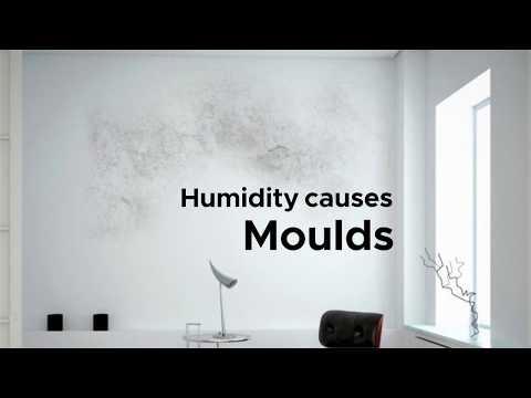 Koryo Dehumifier-  Mould