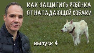 """Сергей Щербаков отвечает на вопрос  """"Как защитить ребенка от нападающей собаки?"""""""