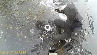 Отчеты о рыбалке в рязанской области сегодня