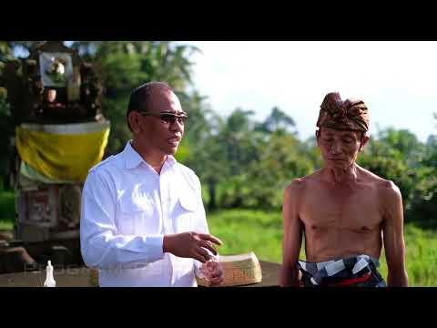 Thumb Kompilasi pelaksanaan kegiatan BWS Bali Penida 2017