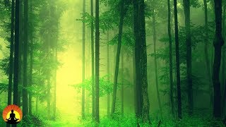 Healing Meditation Music, Relaxing Music, Calming Music, Stress Relief Music, Peaceful Music, ✿3277C