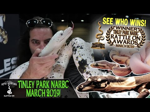NARBC – Tinley Park, Illinois – October 12th & 13th, 2019