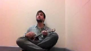 Wolves ( phosphorescent ukulele cover)