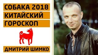 Гороскоп Собака -2018. Астротиполог, Нумеролог - Дмитрий Шимко