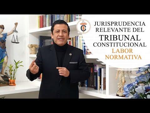 JURISPRUDENCIA RELEVANTE TC: Labor Normativa - Tribuna Constitucional 155