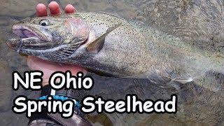 Fly Fishing Ohio's Spring Steelhead Run