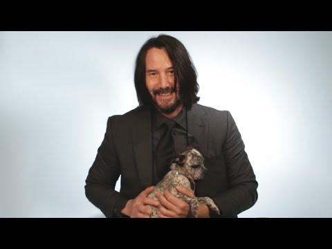 Keanu Reeves si hraje se štěňátky a odpovídá na dotazy