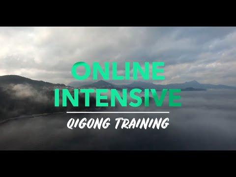 Online Qigong Intensive & Teacher Training: 5 Element Level 1-4 ...