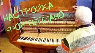 Настройка фортепиано в ростове на дону
