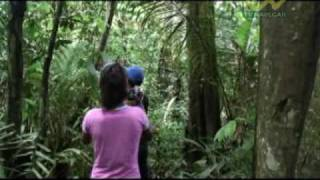 Apresentadora  Programa  Piloto  da   Tv Navegar Amazônia