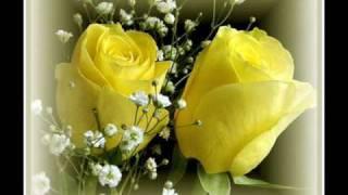 Heidi Hauge - Yellow Roses