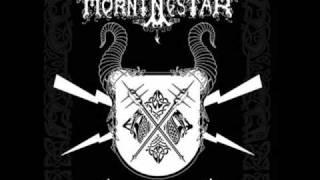 """Morningstar """"In the night"""""""