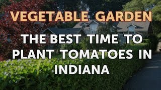 The Best Time to Plant Tomatoes in Indiana