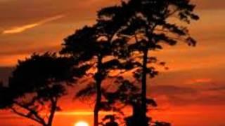 BOBBY PULIDO - A TU LADO - video