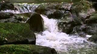 石川県の滝能美市×七つ滝