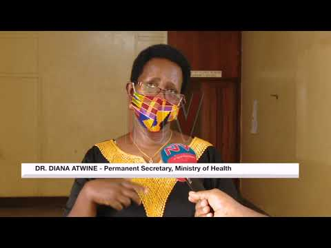 Health Ministry says it will need more time to produce free facemasks