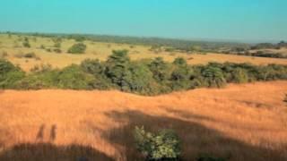 Habitats-Grasslands.mov