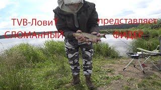 Сысертский пруд рыбалка