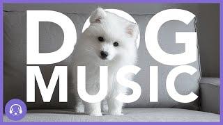 Dog Music: Deeply Soothing Music For Dogs - Winter Playlist (11 Hours)