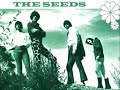 the seeds - the wind blows your hair