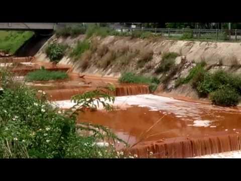 Kênh Ba Bò ô nhiễm môi trường nghiêm trọng