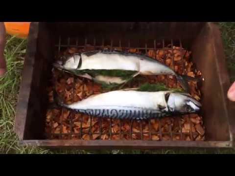 Рыба горячего копчения на ольхе