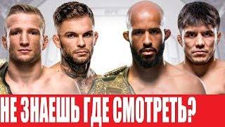 ГДЕ СМОТРЕТЬ БОЙ UFC 227 / ВСЯ ИНФОРМАЦИЯ И ВРЕМЯ
