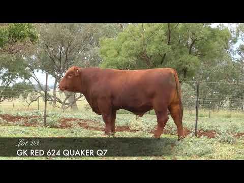 GK RED 624 QUAKER Q7 (AI) (AMF) (MAF) (NHF) (OSF) GK Q07