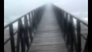 Adan Zapata - Vida De Loco