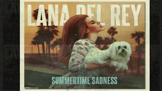 Summertime Sadness (Audio)