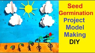 Seed Germination Project | School Model | Science Exhibition | Best Out Of Waste